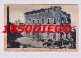 PROCENO - ANTICO PALAZZO SFORZA ( DEL SANGALLO ) F/PICCOLO VIAGGIATA - Viterbo