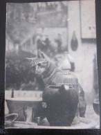 """MENU REVEILLON PARTY DANCING CHRISTMA ILLUSTRATION CHAT/CAT-CRUCHE PASTIS RICARD EAU SELTZ""""LE PETIT CLUB FRANCAIS""""LONDON - Menus"""