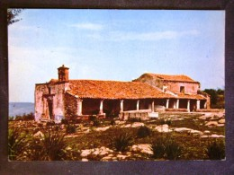 SARDEGNA -CAGLIARI -NUGHEDU SANTA VITTORIA ORISTANO -F.G. LOTTO N°511 - Cagliari