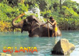 Asie > SRI LANKA  - ELEPHANT Bath  KANDY (LALITH DE SILVA  70062 )*PRIX FIXE - Sri Lanka (Ceylon)