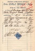 1914 ADRIA - CARLO BRAGA PREMIATO STABILIMENTO ORTICOLO - Italia