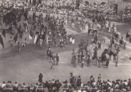 AREZZO - Giostra Del Saracino - Gli Armati In Piazza Grande - 1952 - Arezzo