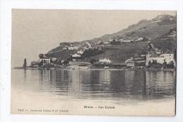 CPA SUISSE - RIVAZ - Lac Léman - Très Jolie Générale Du Village Avec Détails Des Maisons - VD Vaud