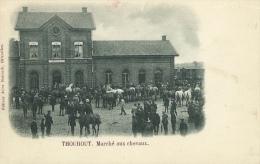Torhout - Marché Aux Chevaux  + De Statie - 1908 ( Verso Zien ) - Torhout