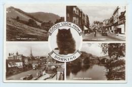 Dorking - Multiview With Black Cat - Surrey