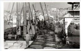 Algerien - Die LMS Arbedo Basel Im Hafen Von Algier 23. Juli 1963 Private Postcard - Ansichtskarten