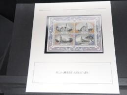 AFRIQUE DU SUD -  Bloc Luxe Avec Texte Explicatif - Belle Qualité - À Voir -  N° 11690 - Hojas Bloque