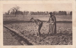 25 - Agriculteur - Frankreich