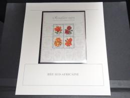 AFRIQUE DU SUD -  Bloc Luxe Avec Texte Explicatif - Belle Qualité - À Voir -  N° 11717 - Hojas Bloque