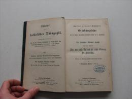 Erziehungslehre 1894 , Kardinal J. Dominicis , Ordnung Des Unterrichts , Freiburg - Herder , Nikolaus Kemph , Schule !!! - Psychologie