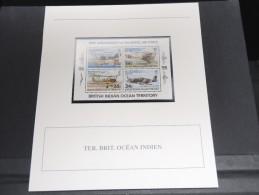 TER. BRIT. OCEAN INDIEN -  Bloc Luxe Avec Texte Explicatif - Belle Qualité - À Voir -  N° 11752 - Other
