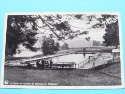Le Bassin De Natation Du Domaine De Wégimont ( Thill ) Anno 1947 ( Zie Foto Voor Details ) !! - Soumagne