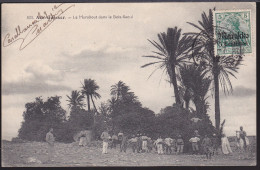 CPA - (Maroc) Aïn Guisser - Le Marabout Dans Le Bois Sacré (timbre Maroc Allemand Oblitéré Trésor Et Poste Casablanca) - Marruecos