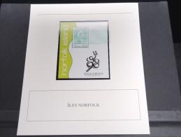 ILE NORFOLK - Bloc Luxe Avec Texte Explicatif - Belle Qualité - À Voir -  N° 11782 - Ile Norfolk
