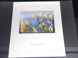 ILES PITCAIRN - Bloc Luxe Avec Texte Explicatif - Belle Qualité - À Voir -  N° 11783 - Timbres