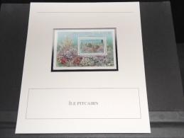 ILES PITCAIRN - Bloc Luxe Avec Texte Explicatif - Belle Qualité - À Voir -  N° 11784 - Timbres