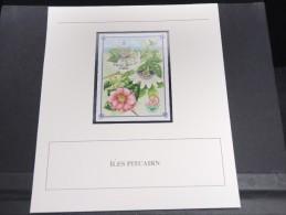 ILES PITCAIRN - Bloc Luxe Avec Texte Explicatif - Belle Qualité - À Voir -  N° 11785 - Timbres