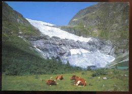 CPM Neuve Norvège Boyabrenn Fjaerland - Norvège