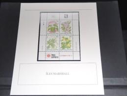 ILES MARSHALL - Bloc Luxe Avec Texte Explicatif - Belle Qualité - À Voir -  N° 11806 - Marshall