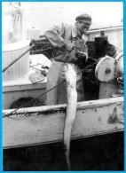 PHOTO Photographie BRETAGNE à Localiser (22 Ou 29) - Pêcheur Remontant Un Poisson - Métier Bateau De Pêche En Mer - Métiers