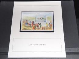 ILES VIERGES BRITANNIQUES - Bloc Luxe Avec Texte Explicatif - Belle Qualité - À Voir -  N° 11814 - Iles Vièrges Britanniques