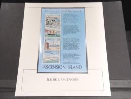 ILE DE L ASCENSION - Bloc Luxe Avec Texte Explicatif - Belle Qualité - À Voir -  N° 11823 - Ascension (Ile De L')