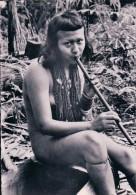 Brésil, Mato-Grosso, Indienne De La Tribu Erigpactsa (481) - Brazil