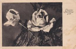 Feldpost WW2: Birthday Postcard From Lazarett Neustettin 1 1.2.1943  (G83-23) - Militaria