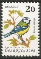 Belarus -MNH - FAMILY TITS AND CHIKADEES : Eurasian Blue Tit ( Cyanistes Caeruleus ) - Zangvogels