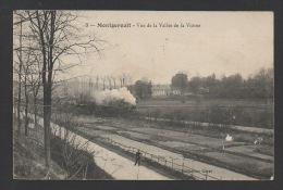 DF / 95 VAL D'OISE / MONTGEROULT / VALLÉE DE LA VIOSNE / PASSAGE DU TRAIN À VAPEUR / CULTURES MARAÎCHÈRES / 1911 - Trains