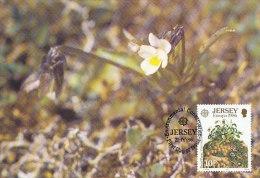 D22149 CARTE MAXIMUM CARD FD 1986 JERSEY - LOCAL FLOWERS CP ORIGINAL - Jersey