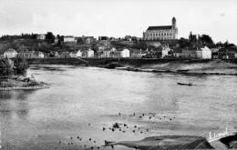 49 CPSM Montjean La Loire Vers Les Quais Et L'Eglise - France