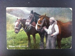 VETERANS OF THE FIELD POSTAL CIRCULADA A ASTURIAS 1908 - Sin Clasificación