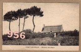 CPA * * PORT-MANECH * * Maison Du Pays - France