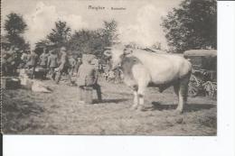 80 ROIGLISE BEUTESTIER - France