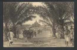 CPA - Entier Postal - Afrique - Congo Belge - BAUDOUINVILLE - Indigènes Apportant Vivres à La Mission  // - Congo Belge - Autres