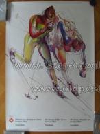 Sarajevo Olympic Winter Games 1984 100x70 Cm 39x27 Inch Biathlon Skiing ORIGINAL - Manifesti