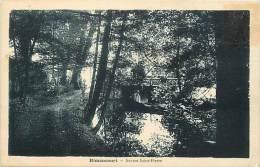 - Haute Marne - Ref-52573 - Rimaucourt - Source Saint Pierre - St Pierre - Sources - - France