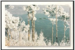 Cina/China/Chine: Intero, Stationery, Entier, Brina Naturale, Natural Frost, Naturel Givre, 2 Scan - Clima & Meteorologia
