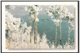 Cina/China/Chine: Intero, Stationery, Entier, Brina Naturale, Natural Frost, Naturel Givre, 2 Scan - Clima & Meteorología