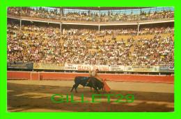 TIJUANA, MEXIQUE - MEXICAN BULLFIGHTER AT EL TOREO DE TIJUANA DOWNTOWN BULLRING - TRAVEL - - Mexico