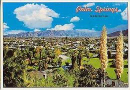 Palm Springs        H133       ( Panorama )     ( Voir Timbre ) - Palm Springs