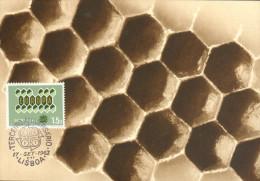 Carte Maximum -  Fragment D'un Rayon De Miel - Europa 1.50 - Andere