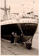 Photo Originale Bateau - 3 Femmes Au Pied Du Paquebot HERDSMAN - Liverpool - Cul De Ferry - - Barche
