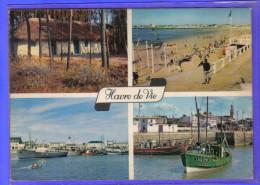 Carte Postale 85. Le Havre-de-vie   Très Beau Plan - France