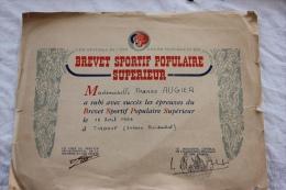 BREVET SPORTIF POPULAIRE SUPERIEUR DE 1953 A TNDOUF SAHARA - Diplômes & Bulletins Scolaires