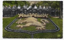 LYON  - N° 85 - PARC DE LA TETE D' OR - LE LION HERALDIQUE - CARTE FORMAT CPA NON VOYAGEE - Lyon