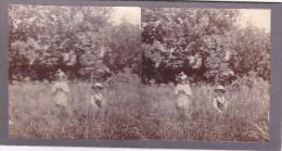 Vieille Photo Stereoscopique 2 Jeunes Enfants Dans Un Champ Aux Hautes Herbes Nature En 1920 - Stereoscopic