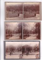 Lot 3 Vieilles Photo Stereoscopiques Pas De Calais Calais Le Jardin Parc Saint Pierre Fontaine Année 1921 - Stereoscopic