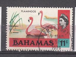 Bahamas 1971 Mi Nr 325 X Rode Flamingo - Bahamas (...-1973)